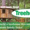 treehouse lead